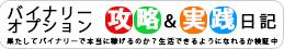 バイナリーオプション必勝法&攻略実践日記 – 目指せ月収10万円